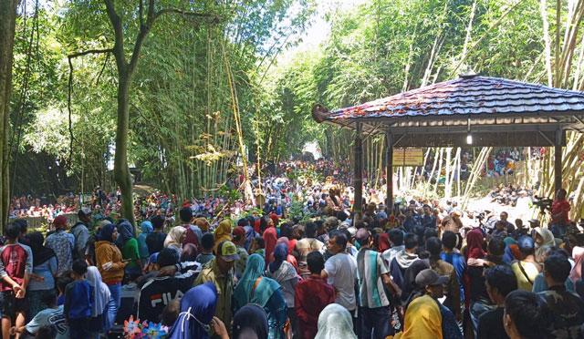 Warga memadati Hutan Bambu