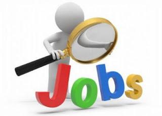 Job alert Decision Intelligence company Peak conducts Digital Hiring Day to enroll freshers for Jaipur media kesari
