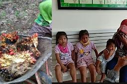 Ibu Tiga Anak Ini Akan Diadili karena Curi Sawit yang Rugikan PTPN Rp76.500