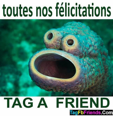 Congratulations In FRENCH