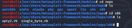 Metasploit framework  nops