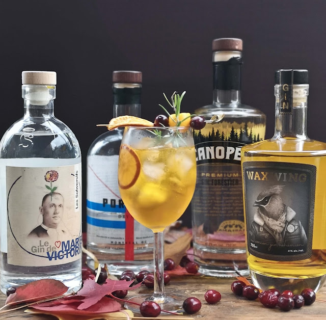 recette-spritz,gin,waxwing,le-gin-de-marie-victorin,canopee,portage,gin-quebecois,madame-gin