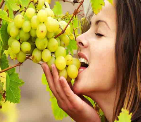 स्वादिष्ट अंगूर के गुण