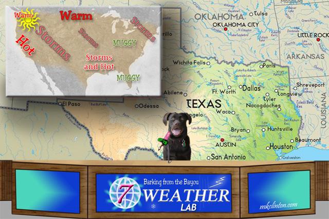 BFTB NETWoof Weather Forecast