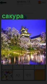 На фоне национального здания расцвела сакура красивыми цветами и подсвечена огнями