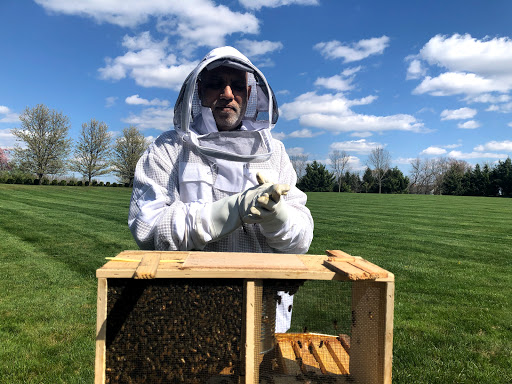 Installing the bee package