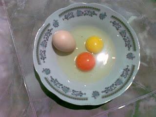 telur ayam arab berwarna kemerahan