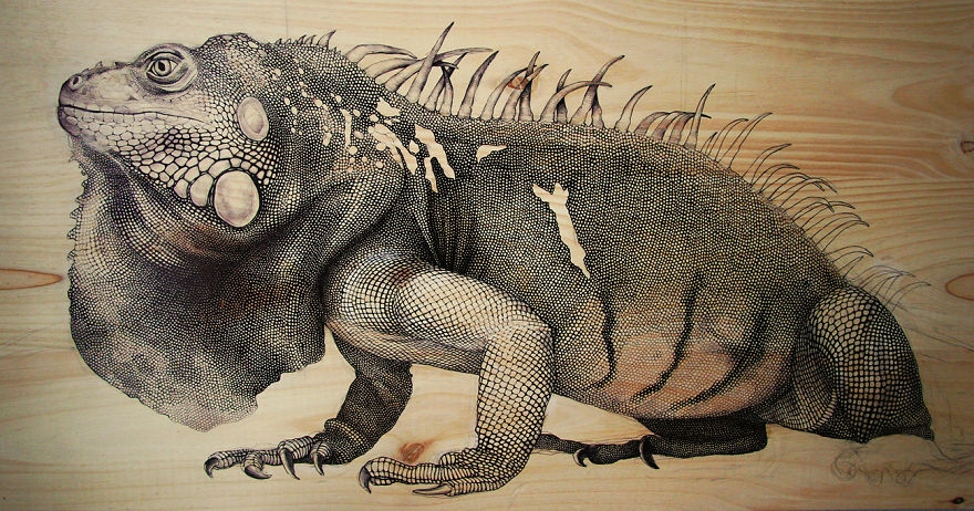 09-Iguana-pen-and-ink-00-Martina-Billi-Recycled-Wooden-Planks-Used-to-Draw-Animals-www-designstack-co