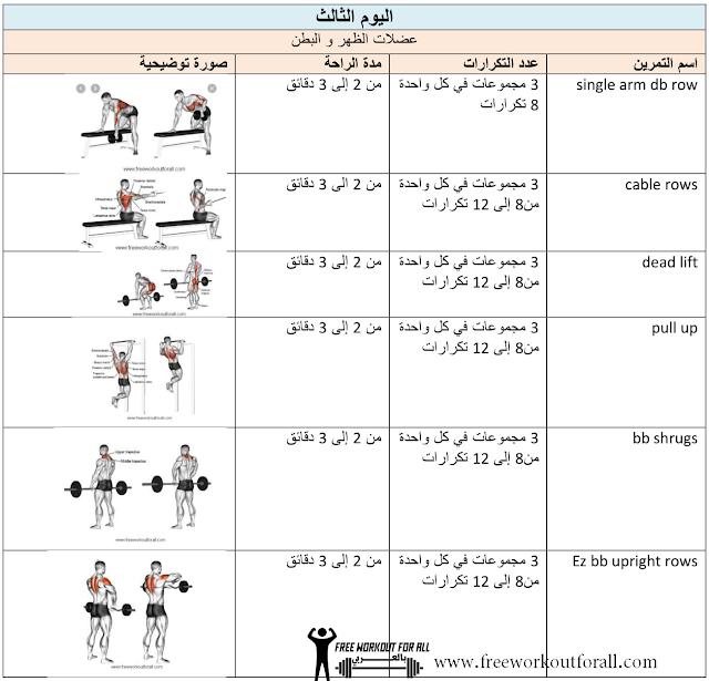جدول تمارين كمال تمارين الظهر الاساسية