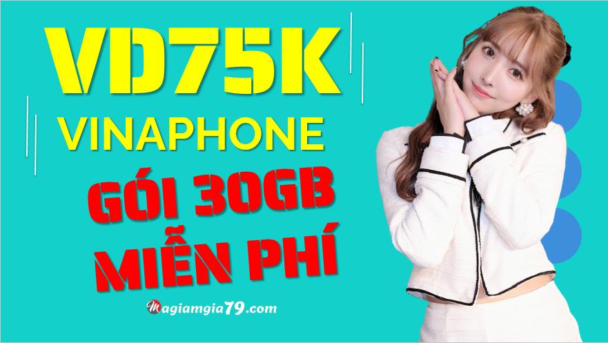 Gói VD75K Vinaphone, gói mạng 1 GB 1 ngày vina