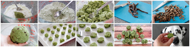 DIY St. Patrick's Day green dog treats, step-by-step how to make