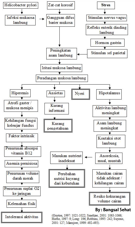 Gastritis erosif akut adalah