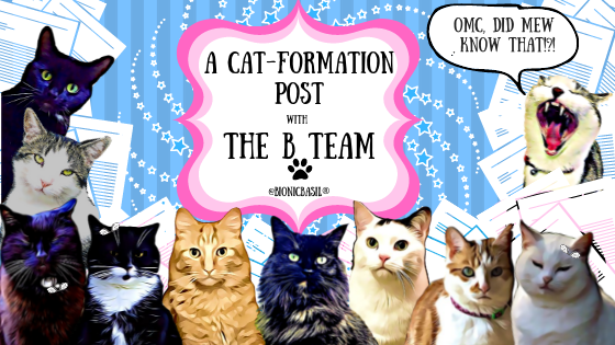A Cat-Formation Post with The B Team ©BionicBasil®