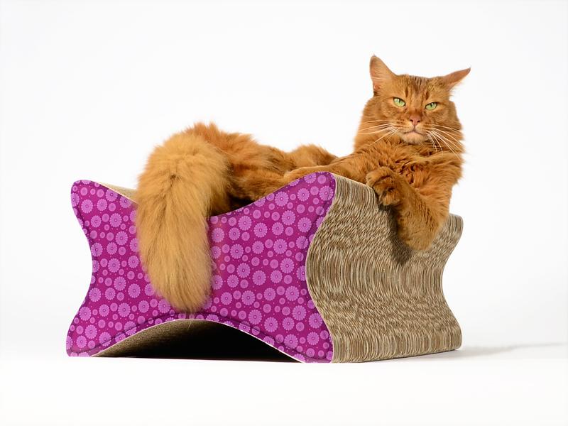 design kratzb ume und m bel f r katzen august 2012. Black Bedroom Furniture Sets. Home Design Ideas