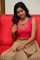 Akshita super cute Pink Choli at south indian thalis and filmy breakfast in Filmy Junction inaguration by Gopichand ~  Exclusive 092.JPG