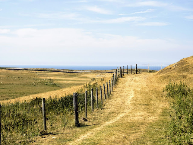 Things to do in Llandudno: Hike in Great Orme Country Park