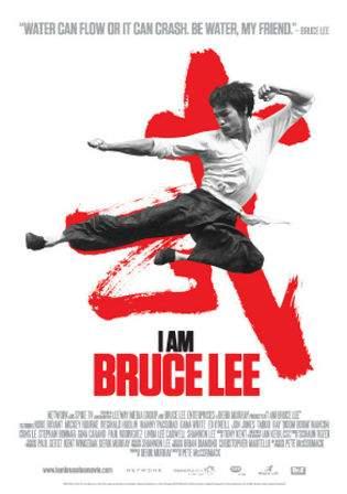 I Am Bruce Lee 2011 BRRip 300MB Hindi Dual Audio 480p Watch Online Full Movie Download Worldfree4u 9xmovies