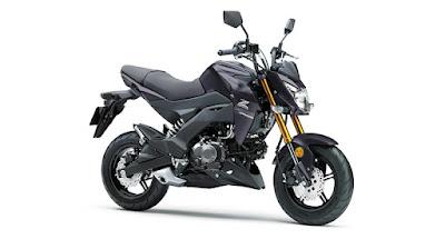 Warna, Fitur, dan Spesifikasi Kawasaki Z125 Pro