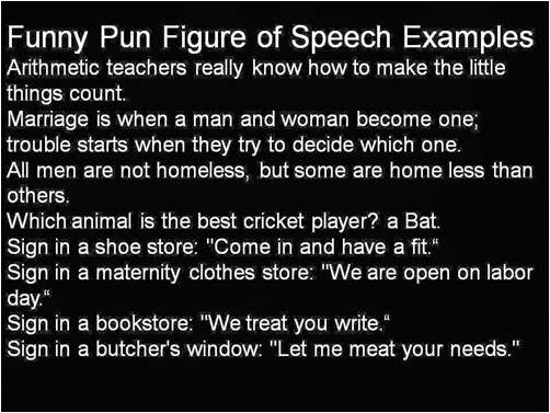 Funny Pun figure of Speech Jokes, Words Examples