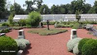 Herb garden with glasshouses in background - Elizabeth Park, West Hartford, CT