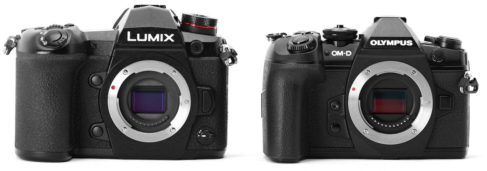 Panasonic Lumix G9 и Olympus OM-D E-M1 Mark II