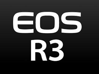 Canon EOS R3 User Guide / Manual Download