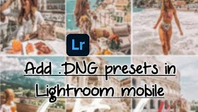 How to install/import/use .DNG presets in Lightroom mobile app