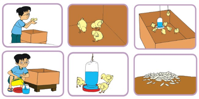77 Gambar Pola Hewan Untuk Anak Sd Terbaru