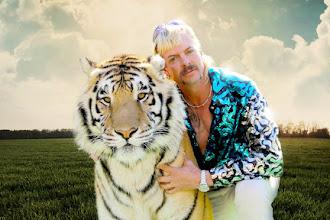 """Tiger King"" – szalona przejażdżka tuż nad szambem"
