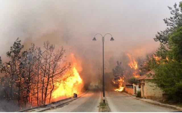 حرائق  الغابات مفتعلة الجزائر