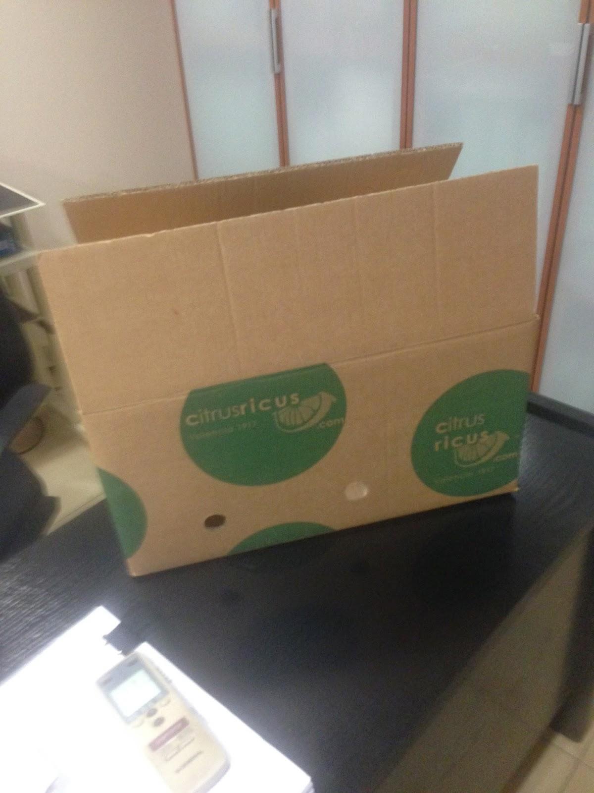 cajas de carton para naranjas