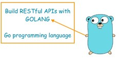 Golang: Introduction to REST APIs (Go programming language)