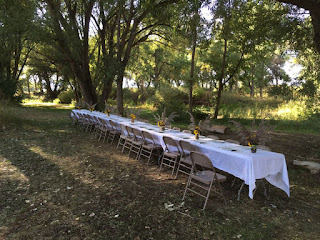 Very long banquet table among tall trees