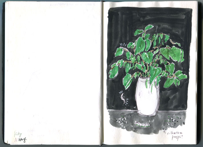 Kitty N. Wong / Silkworms sketchbook