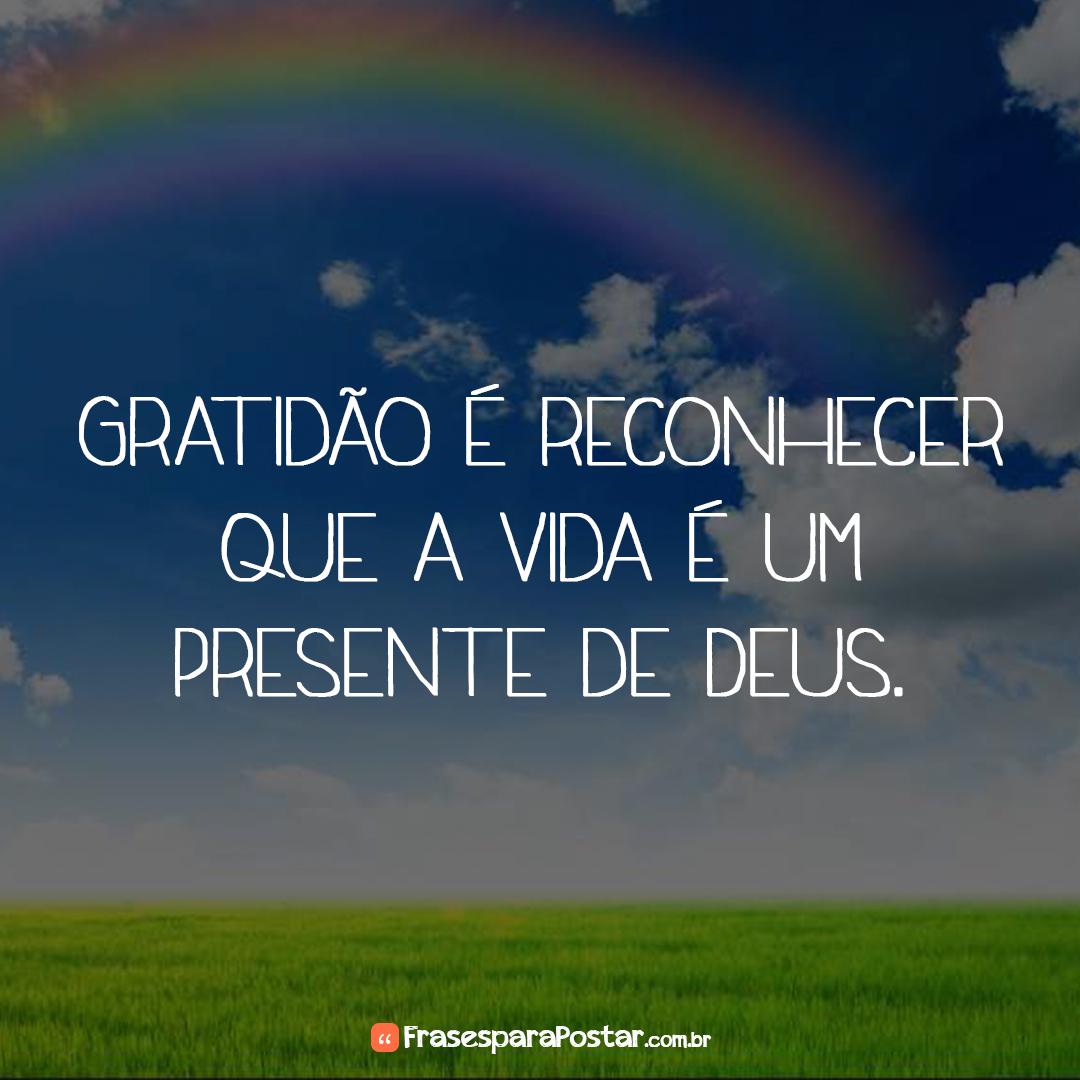 Gratidão é reconhecer que a vida é um presente de Deus.