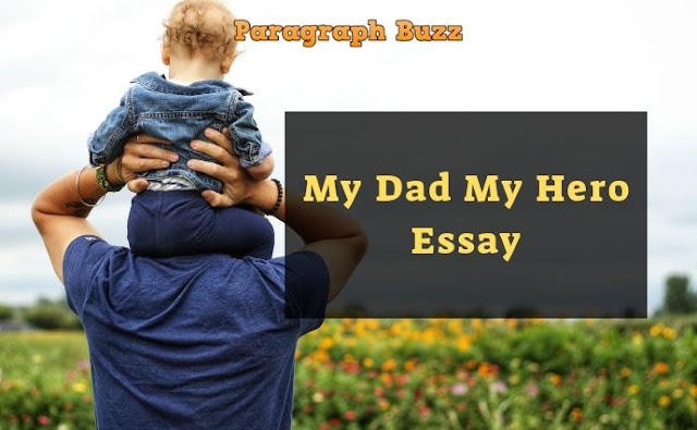 Essay on My Dad My Hero