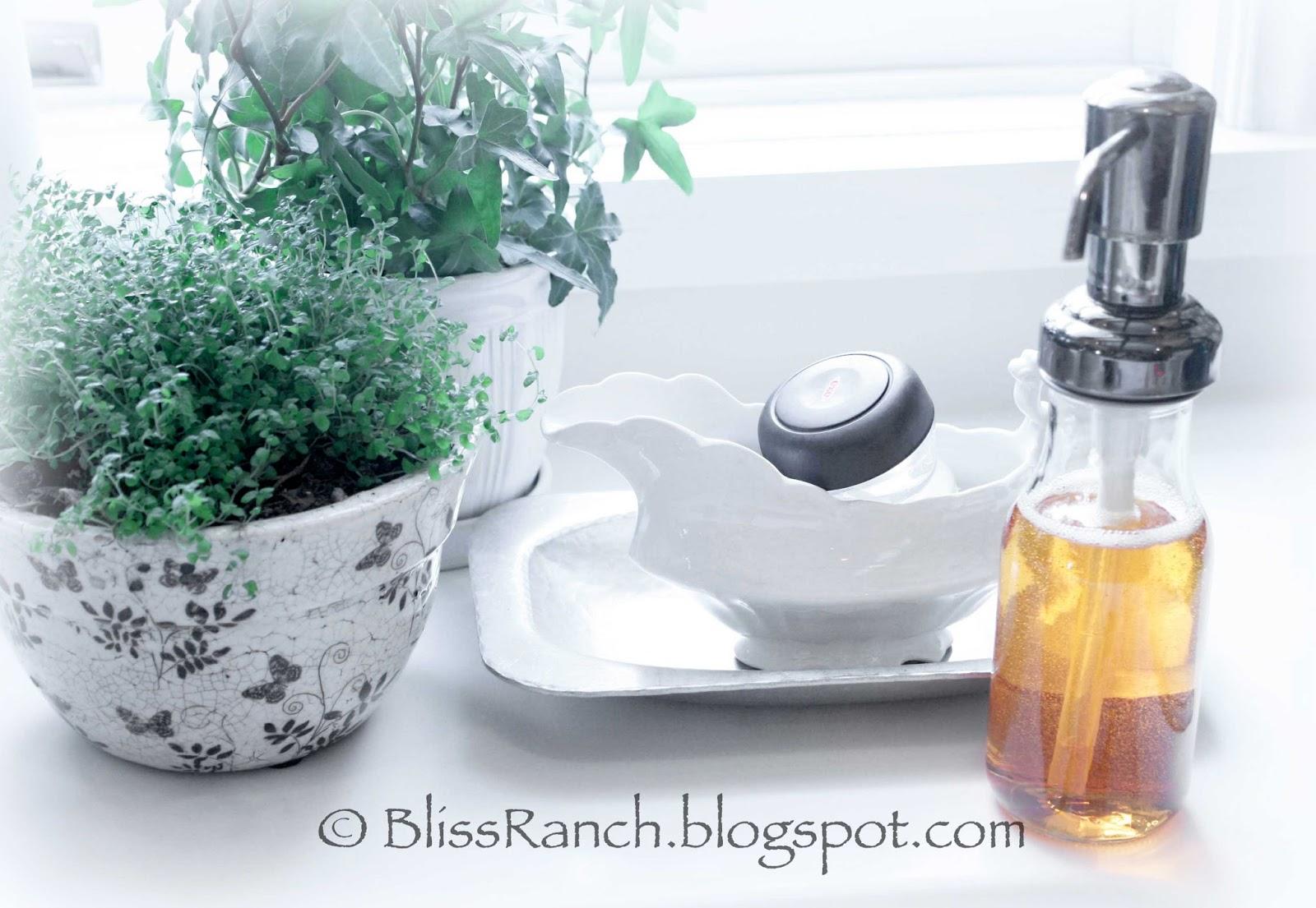 Recycled Latte Bottle Soap Dispenser Www Bliss Ranch Com