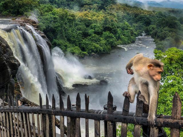 Athirapally falls kerela money monsoon