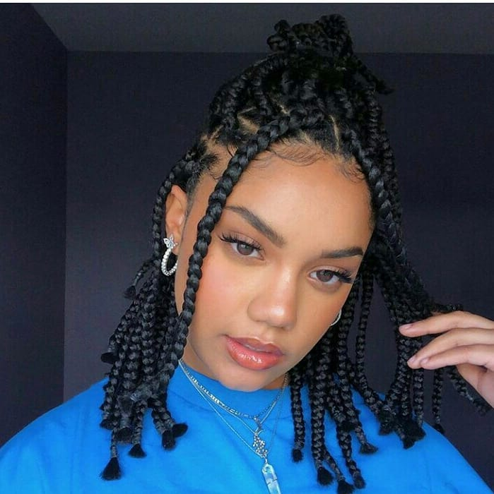 New 2019 Braids Hairstyles For Ladies