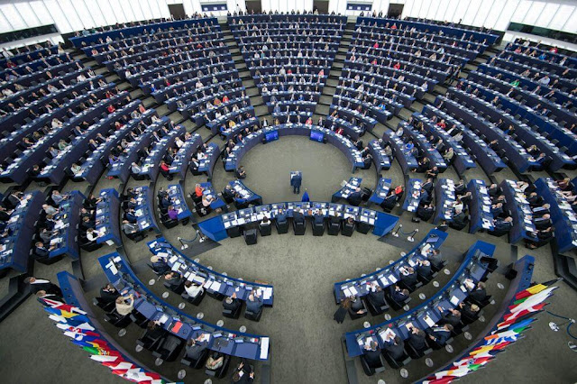 Member of European Parliament said- Removal of Article 370 is helpful in ending terrorism from Kashmir