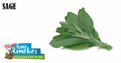 Top 10 Foods That Help You Smell Nice: Sage