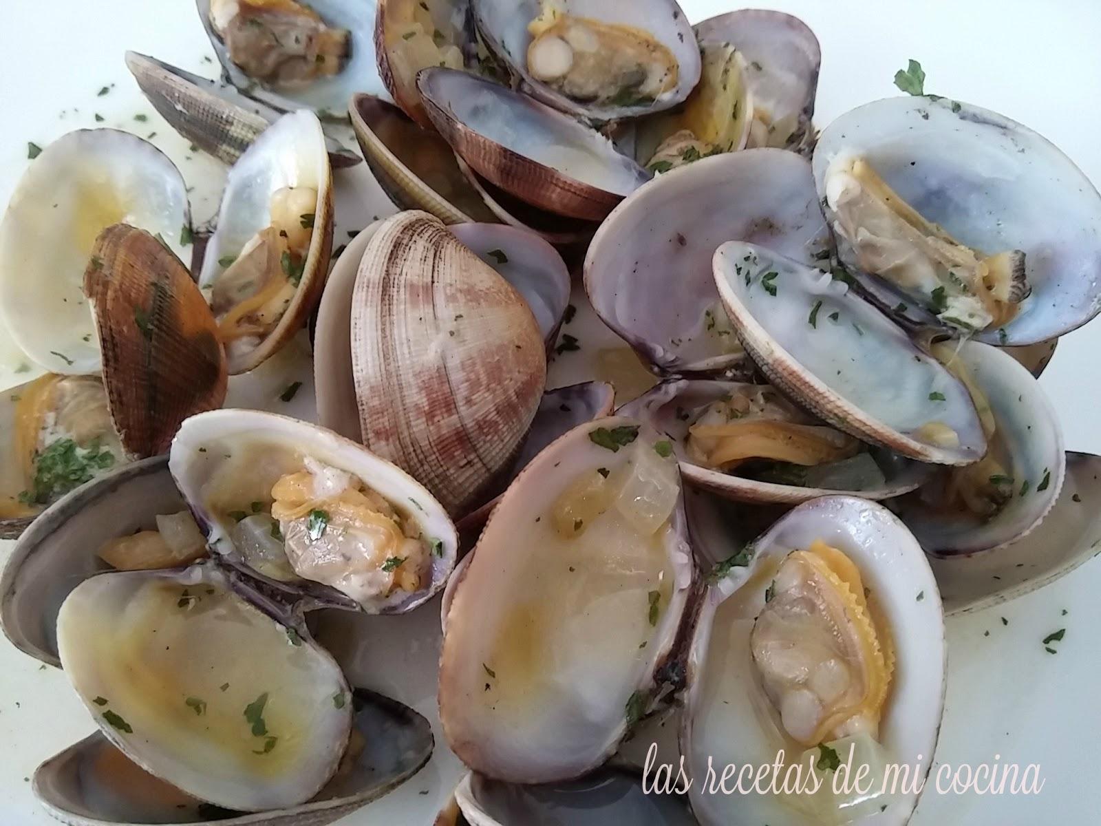 Recetas De Cocina Almejas A La Marinera | Las Recetas De Mi Cocina Almejas A La Marinera