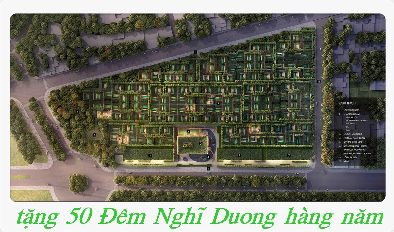 thiết kế dự án wyndham garden