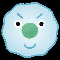 免疫細胞のイラスト