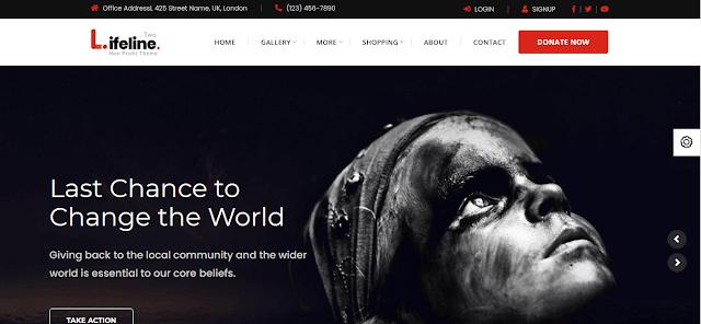 Nonprofit Fundraising & Charity WordPress Themes With Donation System    Lifeline 2