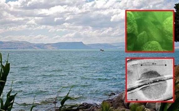 Estructura de piedra bajo aguas del Mar de Galilea