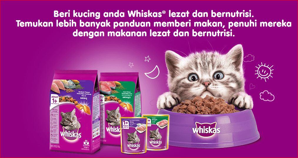 harga makanan kucing whiskas di Indomaret dan Alfamart
