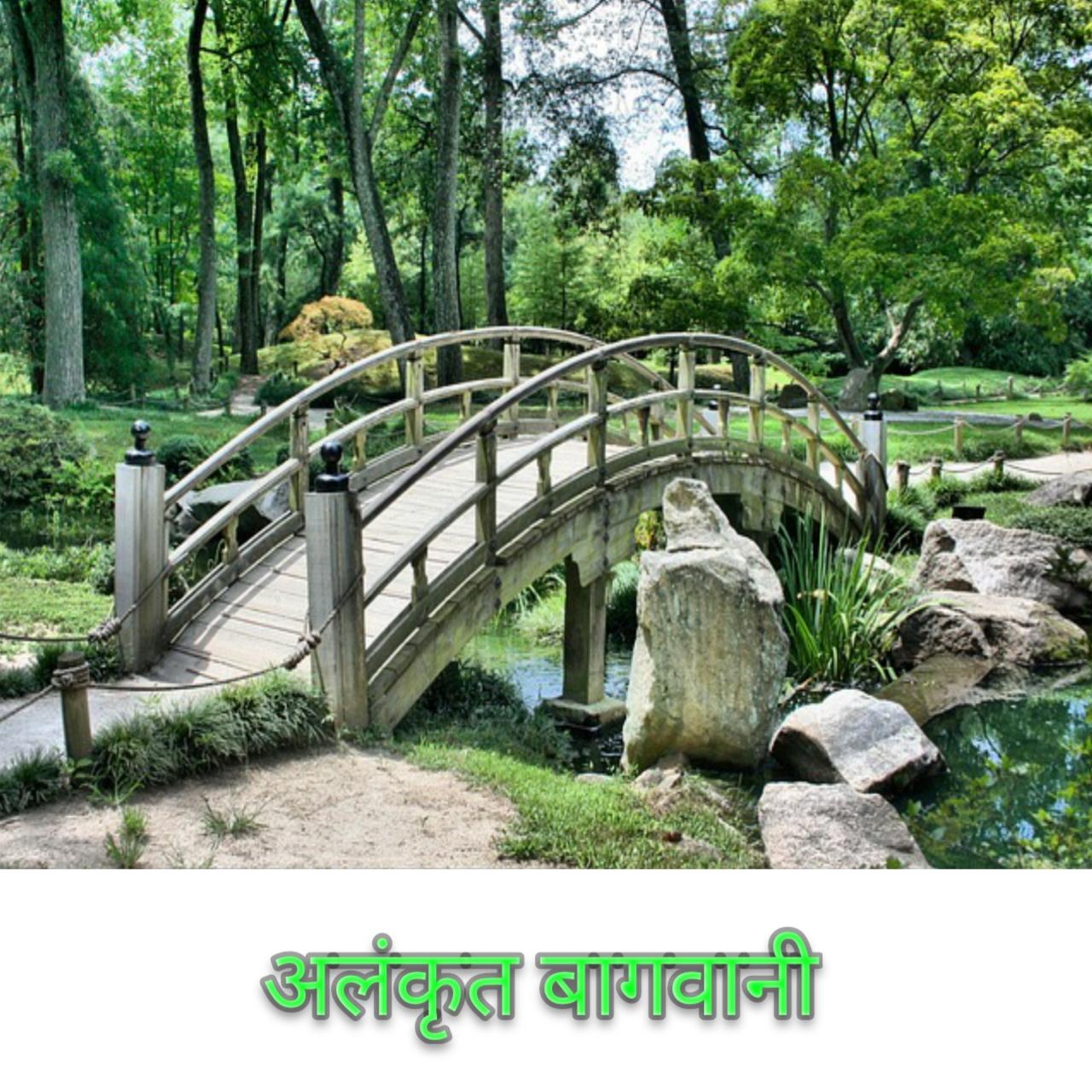 भारत में अलंकृत बागवानी का महत्व और भविष्य Importance and future of ornate gardening in India