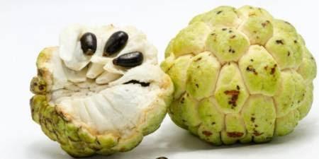 Manfaat buah srikaya untuk kesehatan tubuh