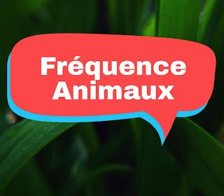 Fréquence chaine ANIMAUX en français sur Astra 2020